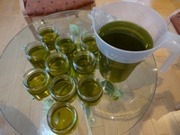 Autumn Olive Harvest